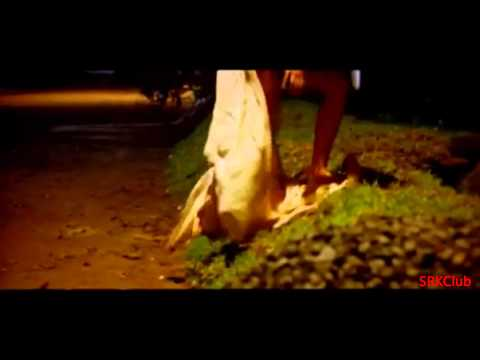 Youtube          Sway Sway' Full Song Hd   Hisss 2010  Hd    Feat  Mallika Sherawat & Irrfan Khan video
