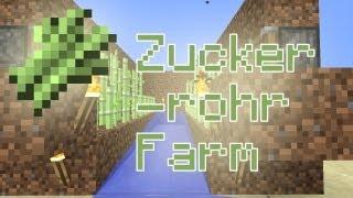 Minecraft-Tutorial: Zuckerrohr-Plantage - Wie baut man eine Zuckerrohr-Plantage?