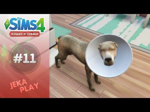 The Sims 4 Кошки и собаки   Собаке плохо! - #11