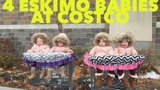 WE TOOK 4 ESKIMO BABIES TO COSTCO