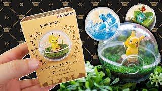 Opening 10 Mystery Pokemon Terrariums!