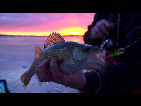 Spoon-Fed South Dakota Jumbo Perch & Walleyes --