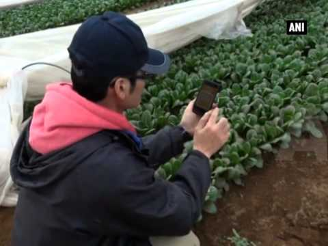 Advanced technology to revive Japan's farming sector