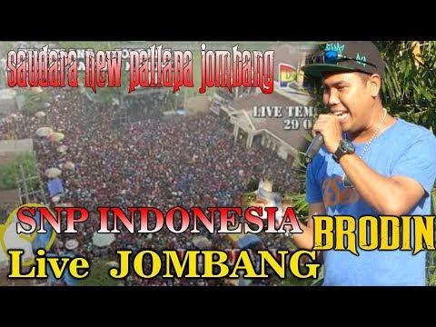 LIVE JOMBANG TERBARU - SAUDARA NEW PALLAPA INDONESIA - BRODIN