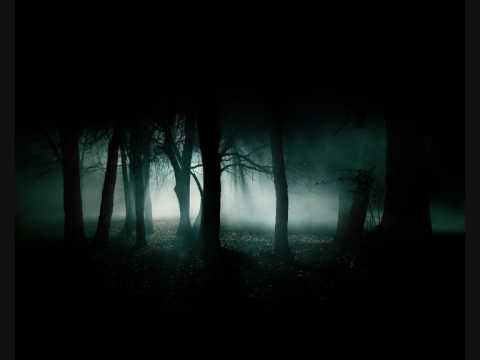 Ludique - Lost in the Woods (IDM)