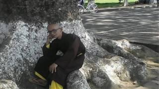 Năm Lời Di Chúc Của Trưởng Lão Thích Thông Lạc - Chánh Phật Pháp Thực Tiễn