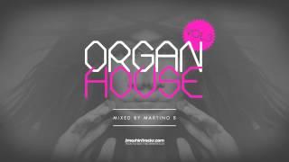 Martino B ● Organ House v003 (August 2015)