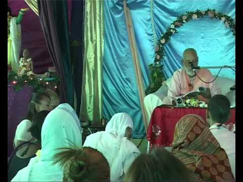 20080615 badger Gurudev Kripa Koroka video