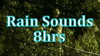 """Rain"" 8 hours of ""Rain Sounds""    ""Sleep Sounds"""