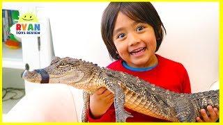 Surprise Ryan with Pet Crocodile!