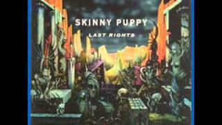 Skinny Puppy - Lust Chance