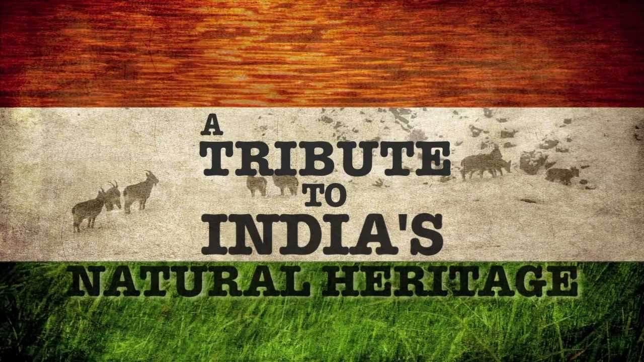 essay on national anthem of india Before it was the national anthem of india, jana gana mana was heard in the film hamrahi (1945) on the occasion of india attaining freedom, the indian constituent assembly assembled for.