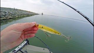 This Lure TRIGGERS Texas Fish Feeding Frenzy