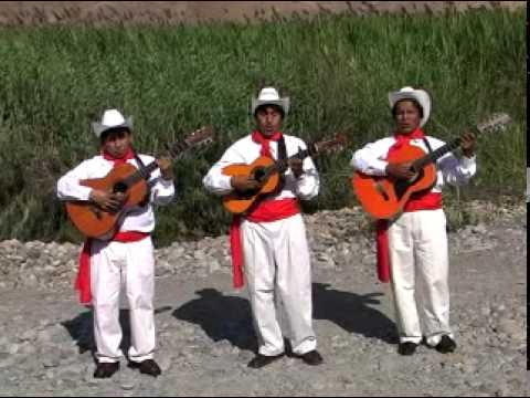 Trío Los Trigales - El Trigo