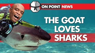 Anderson Silva Loves Sharks, Fabricio Werdum Rescues A Kid, Romero Smashes An Obstacle Course
