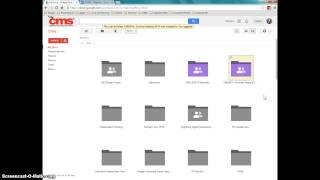 Getting Great With Google - Organization