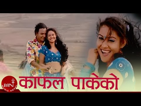 Kafal Pakeko By Raju Pariyar And Devi Gharti video