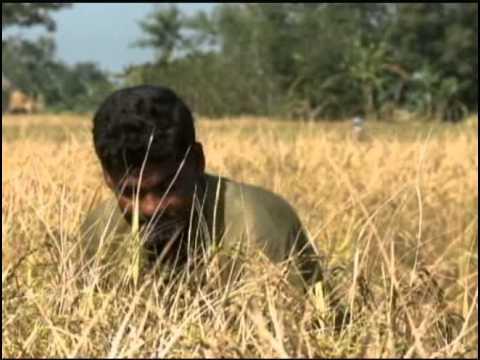 Bangladesh: Climate Change Threatens Livelihood