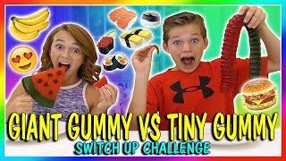 GIANT GUMMY VS TINY GUMMY | SWITCH UP CHALLENGE | We Are The Davises