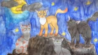 Конкурс рисунков котов воителей