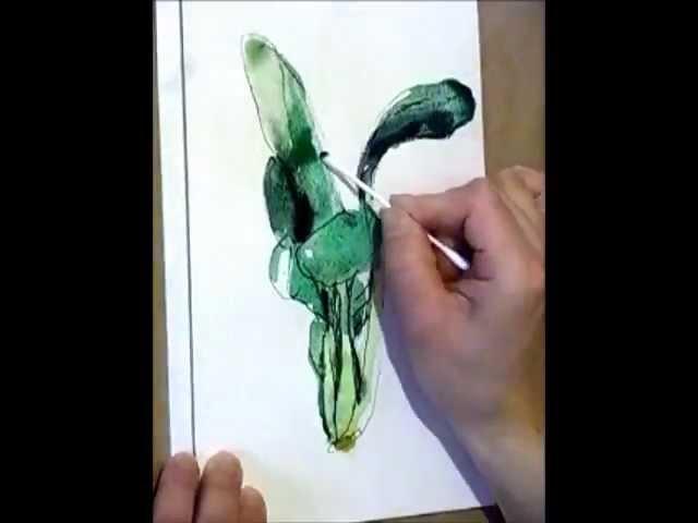 小松菜 komatsuna | watercolor painting  | watercolor journal drawing vegetables