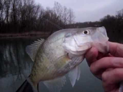 James River Crappie Fishing (Non-Stop) - Jan 2013