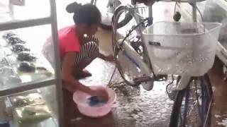thick asian ,thick asian women ,xnxx cambodia