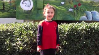 "TED Mersin College Kindergarden E-Twinning Project 3rd Video about ""My Favourite Animal"""