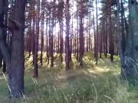 Вера Матвеева - На Траве Зеленой Лета