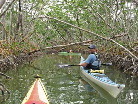Kayaking the Florida Everglades 2009 Video