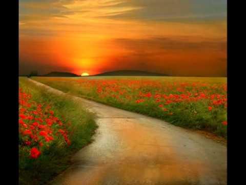 los caminos de la vida vicentico: