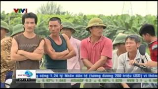 VTV ban tin Tai chinh sang 21 08 2014