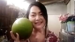 caslubnis thoj ua qhob noom coconut rau sawv daws tau saib os