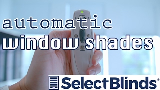 Motorized Window Shades Review