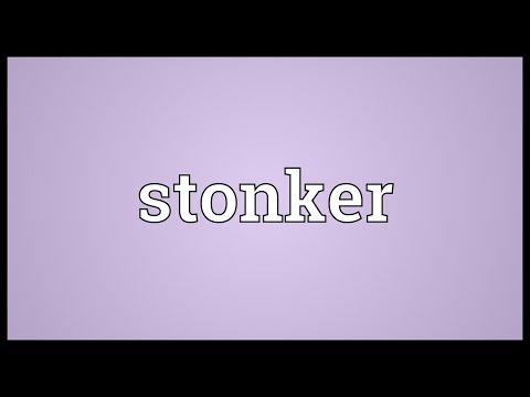 Header of stonker