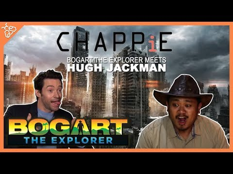 BOGART THE EXPLORER MEETS HUGH JACKMAN