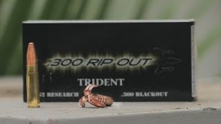 300 Trident - New Ammo in RatedRR Slow Mo