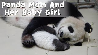 Baby Panda Snuggles Up With Mom While Sleeping | iPanda