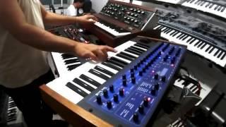 Minimoog model D , Ibiza House , DJ Roni