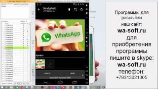 Как сделать рассылку по whatsapp через компьютер