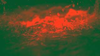 Lightfall EP - Walk on Water - Official Lyric Video