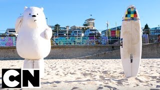 We Bare Bears | Bears at Bondi Beach 🏖️| Cartoon Network