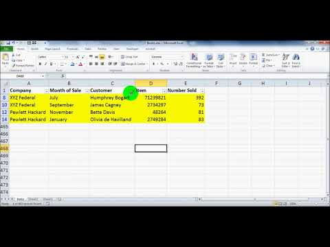 Microsoft Excel Filter Tutorial for Beginners - Microsoft Office 2003, 2007, 2010