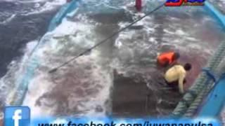 Kisah Tragedi nyata Kapal nelayan juwana pati tenggelam