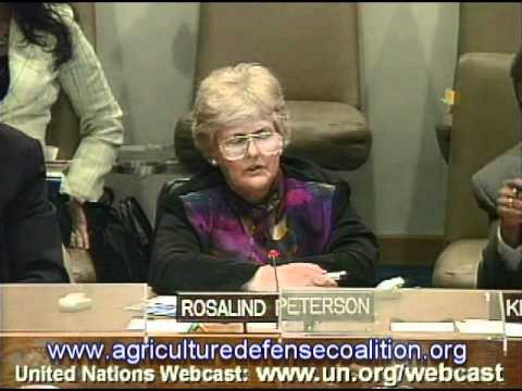 Rosalind Peterson Presents at 2007 UN Session on Global Warming