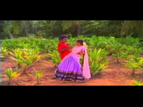 Mangammagari Manavadu | Danchave Menatha Koothura Video Song | Bala Krishna, Suhasini video