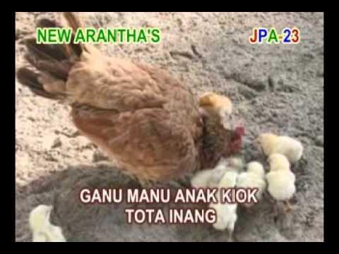 Centhus Botha - O Inang (lagu Daerah Sikka - Maumere - Flores - Ntt video