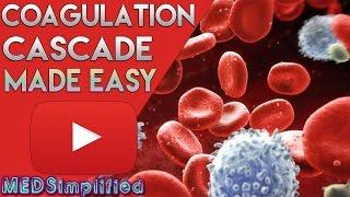 Coagulation Cascade SIMPLEST EXPLANATION !! The Extrinsic and Intrinsic Pathway of HEMOSTASIS