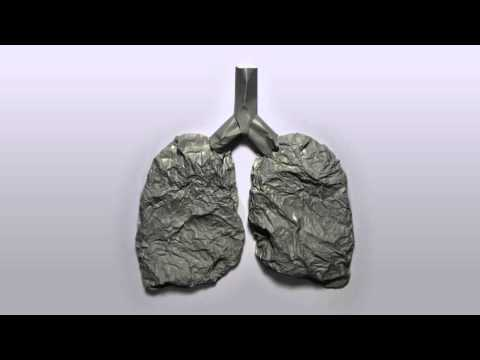 World No Tobacco Day, 31 May 2013 [Live Windows Project]