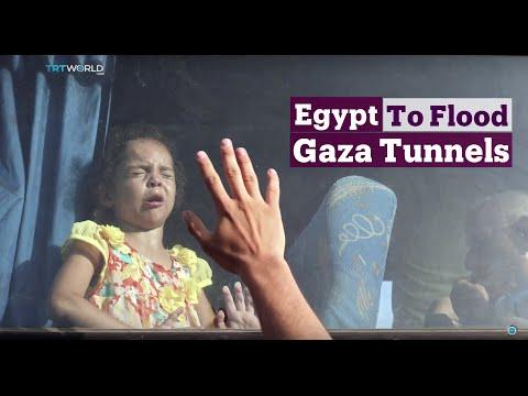TRT World - World in Focus: Egypt to Flood Gaza Tunnels